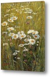 Постер Цветя в поляната