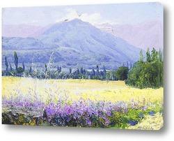 Постер Холмы, поля и люцерны, Чили