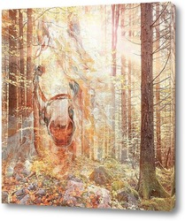 Постер Золотой лес
