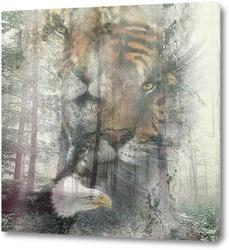 Постер Тайны леса