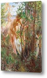 Постер Eve