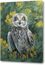 Картина Болотная сова