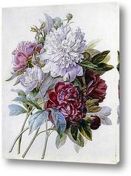 Картина 182313