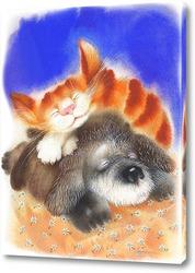 Постер Пёс и кот