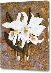 Картина Орхидеи белые