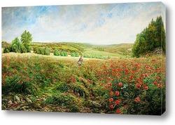 Картина Angle Fields в Bloom