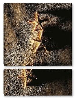 Модульная картина Starfish050