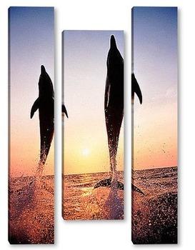 Модульная картина Dolphin064
